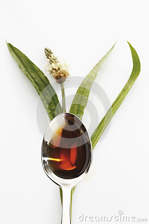 Free Ribwort Plantain With A Spoon Of Cough Syrup On White Background Stock Images - 50476234