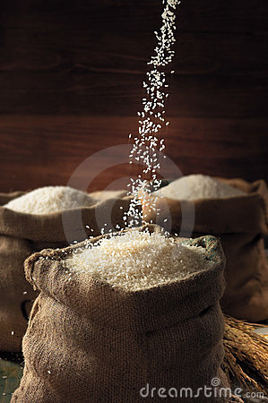 Free Rice Stock Photo - 14378460