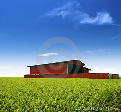 Free Rice Factory. Royalty Free Stock Photos - 9454518