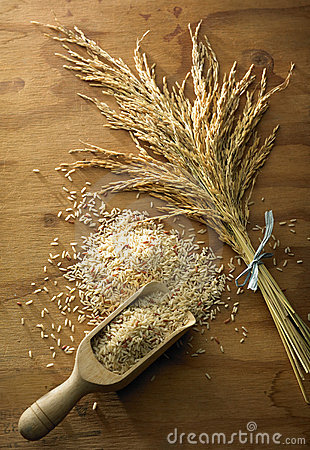 Rice Grain Royalty Free Stock Photos - Image: 13883638