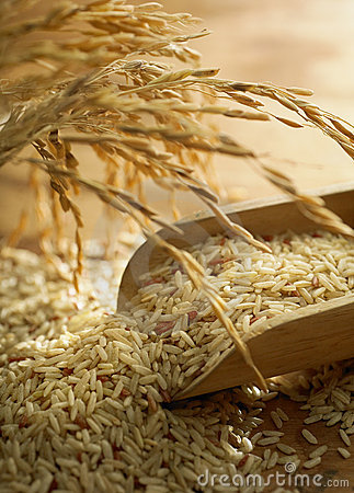 Rice Grain Stock Photos - Image: 13883683