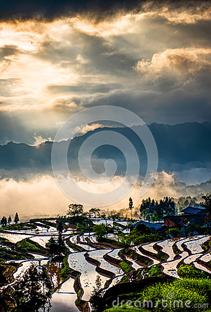 Free Rice Terraces And Colorful Clouds Stock Photography - 62252302