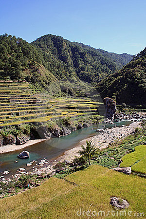 Free Rice Terraces River Valley North Luzon Philippines Stock Image - 631721