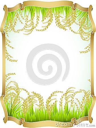 Rice, Thai, white, Jasmine rice