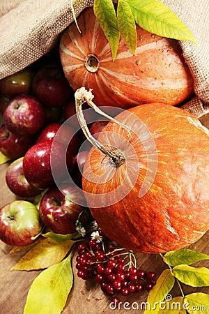 Rich autumn harvest