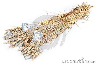 Rich crop