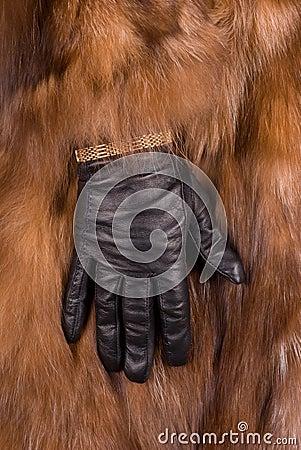 Rich hands symbols