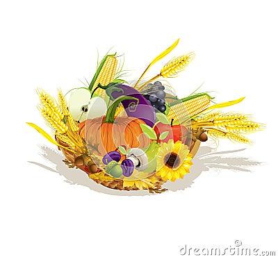 Rich harvest of vegetables