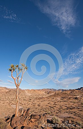 Richtersveld in South Africa