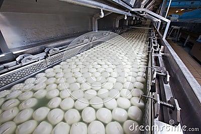 Ricotta för fabriksmozzarellaprovola