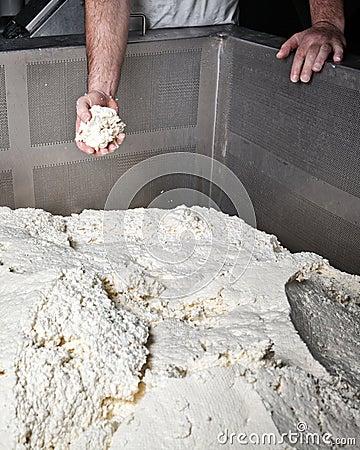 Ricotta provola μοτσαρελών εργοστασίων