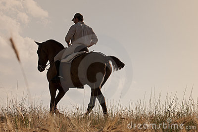 Rider with his horse into the sunset