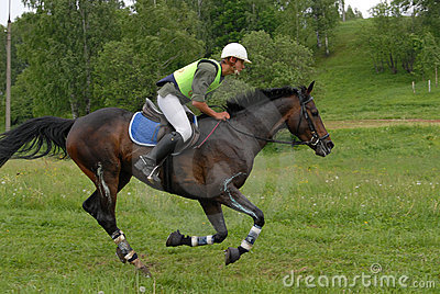 Rider and horse on a cross country jump course Editorial Image