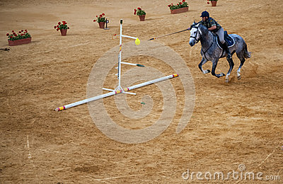 Rider on horseback Editorial Image
