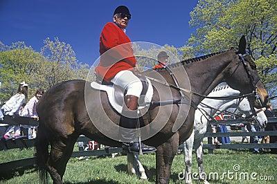 Rider on horseback observing steeplechase field, Editorial Photo