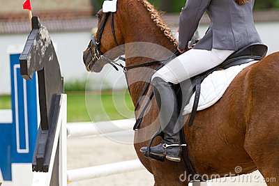 Rider in showjumping