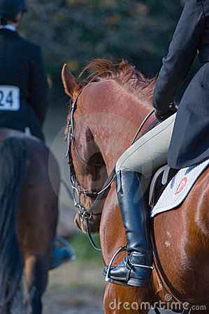 Riders in equestrian event