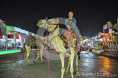 Riding a camel Editorial Stock Photo