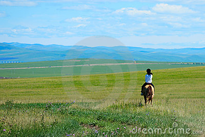 Riding horse in grassland