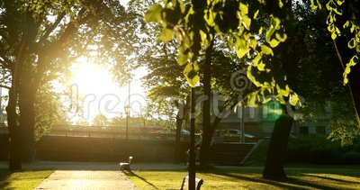 Riga, Lettonia Il sole del sole con luce naturale del sole e il sole che scorre attraverso gli alberi di legno in quadrato nei pr video d archivio
