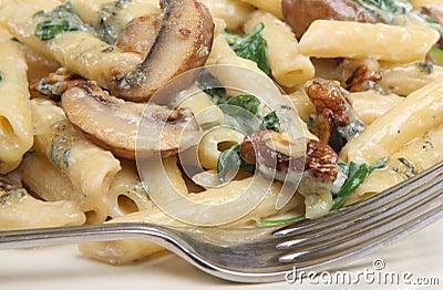 Rigatoni Pasta with Cheese and Mushroom Sauce