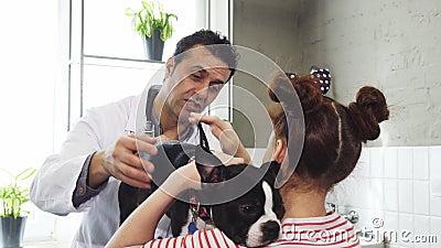 Rijp het professionele dierenarts spreken aan een klein meisje terwijl het petting van haar hond stock video