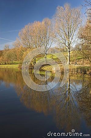 Rijswijk park