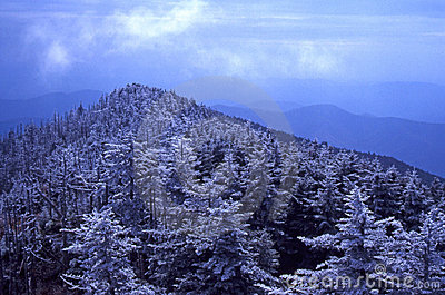 Rime Ice on Mt. Mitchell