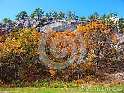 Rimmon Rock and Foliage