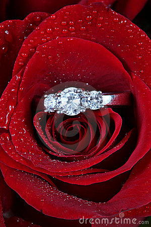 Ring in red rose petals