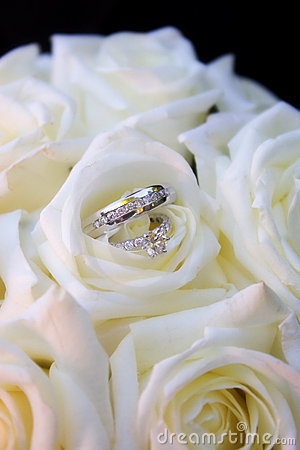 Rings in white roses