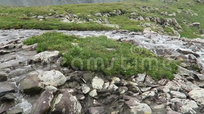 Rio da montanha que corre atrav?s das rochas Paisagem das montanhas de Altai vídeos de arquivo