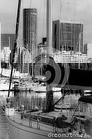 Rio de Janeiro marina