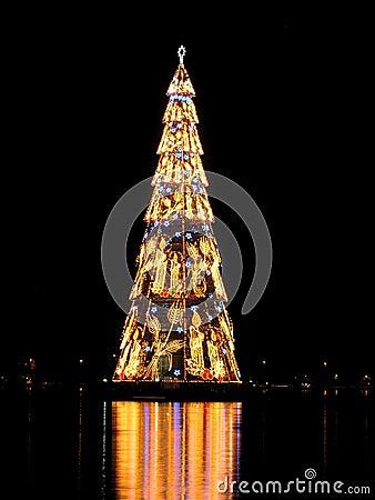 Rio de Janeiro?s christmas tree