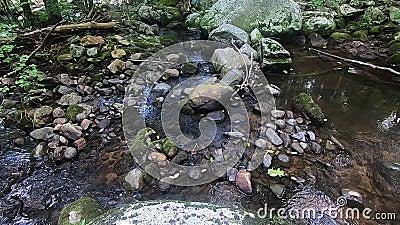 Rio Hazel, Shenandoah Virginia - água superficial e rochas de cima video estoque