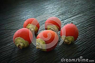 Rip areca or betel palm fruit
