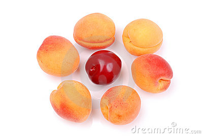 Ripe apricots and plums on white