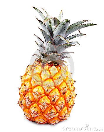 Free Ripe Baby Pineapple On White Background Stock Photo - 30201110
