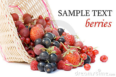 Ripe berries in a basket