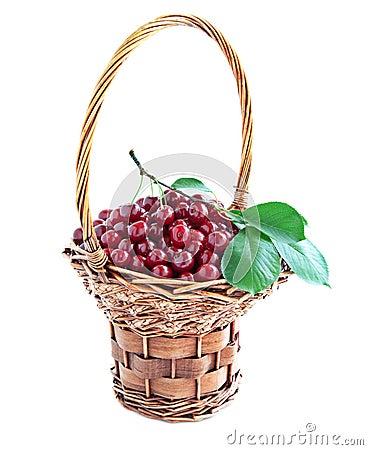 Ripe cherries .