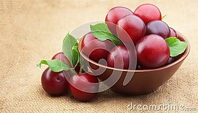 Ripe cherry plum