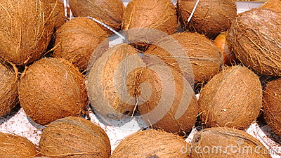 Ripe coconuts in market as background