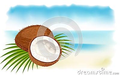 Ripe coconuts, sea and beach.