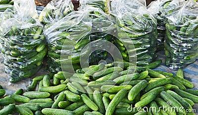 Ripe cucumber form garden
