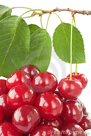 Ripe fresh cherry