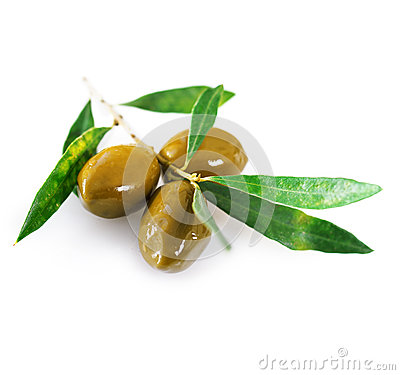 Ripe green olives with leaves