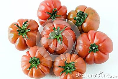 Ripe italian tomato