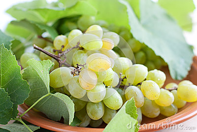 Ripe juicy grapes on the plate