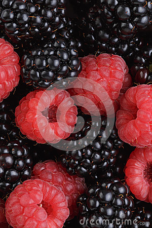 Ripe organic blackberries and raspberries
