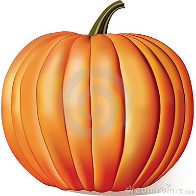 Free Ripe Pumpkin Stock Images - 16072294